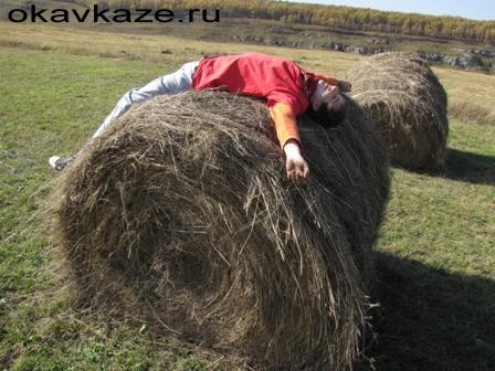 помастерье почвоведа